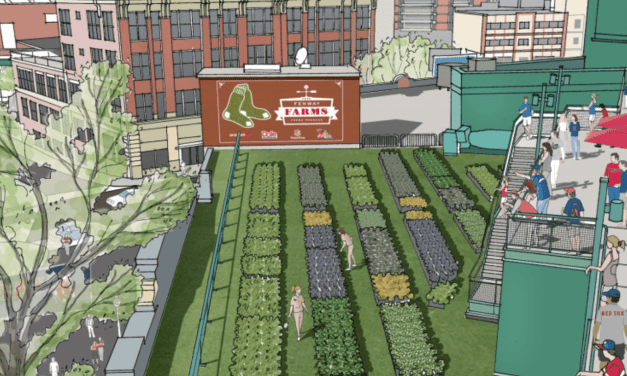 Major League Rooftop Farms