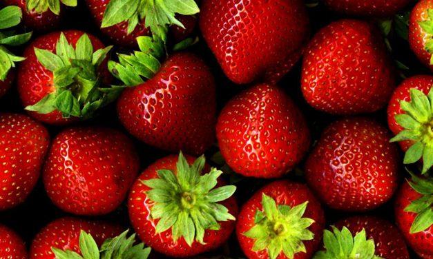 Nutrients: How Sweet It Is
