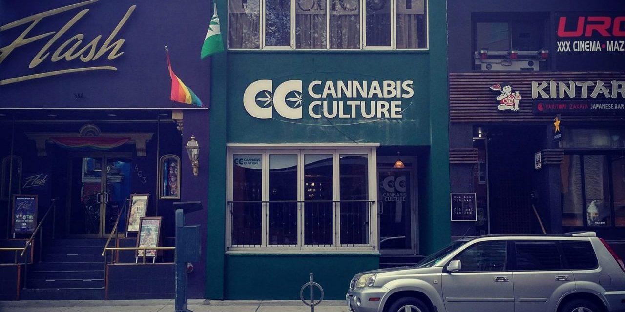 The Cannabis Contamination Scheme