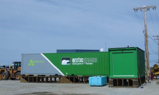 Hydroponic Farming Hits the Arctic