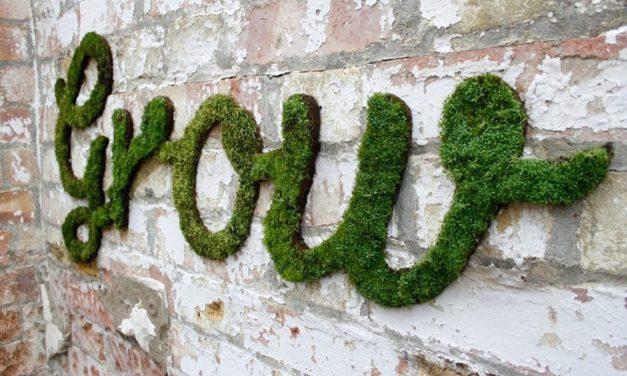 Grow Some Graffiti