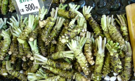 Grow Your Own Wasabi