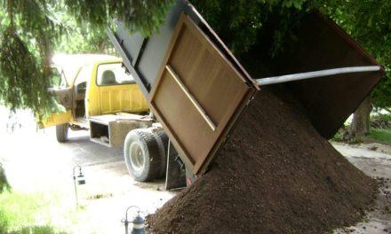 Soil Immigration