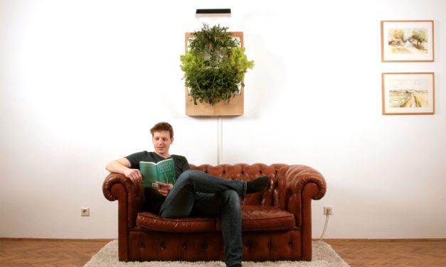 Meet Herbert: Indoor Vertical Garden