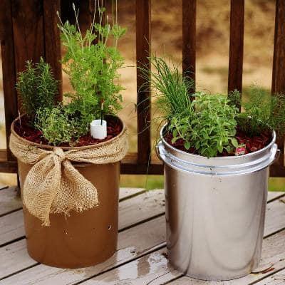 Self watering planter