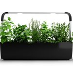 New Indoor Garden Systems from Tregren