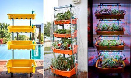 Meet Altifarm Vertical Garden System