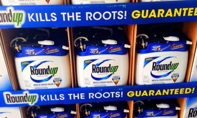 Roundup Revelations: Monsanto-EPA Collusion Exposed