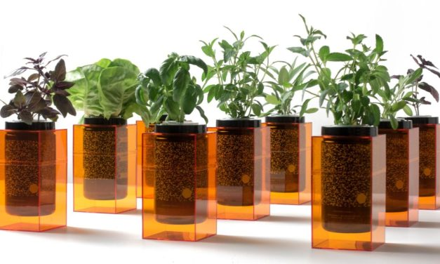 Meet Spacepot: NASA-Inspired Hydroponic Pots