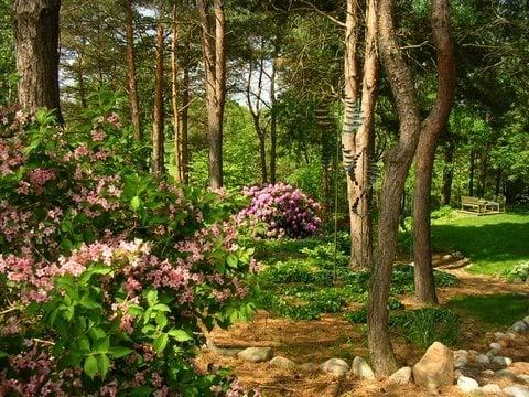 Michigan Wooded Garden   Garden Design on Wooded Backyard Ideas id=31821