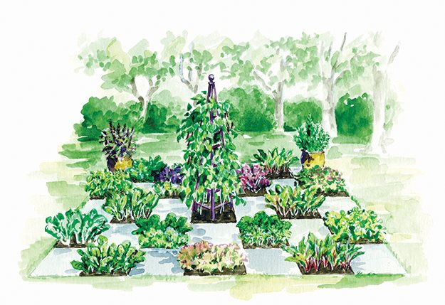 Vertical Vegetable Garden Box