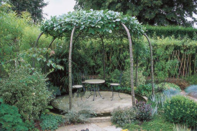 Tree Planting Ideas & Design Tips | Garden Design on Tree Planting Ideas For Backyard id=25436