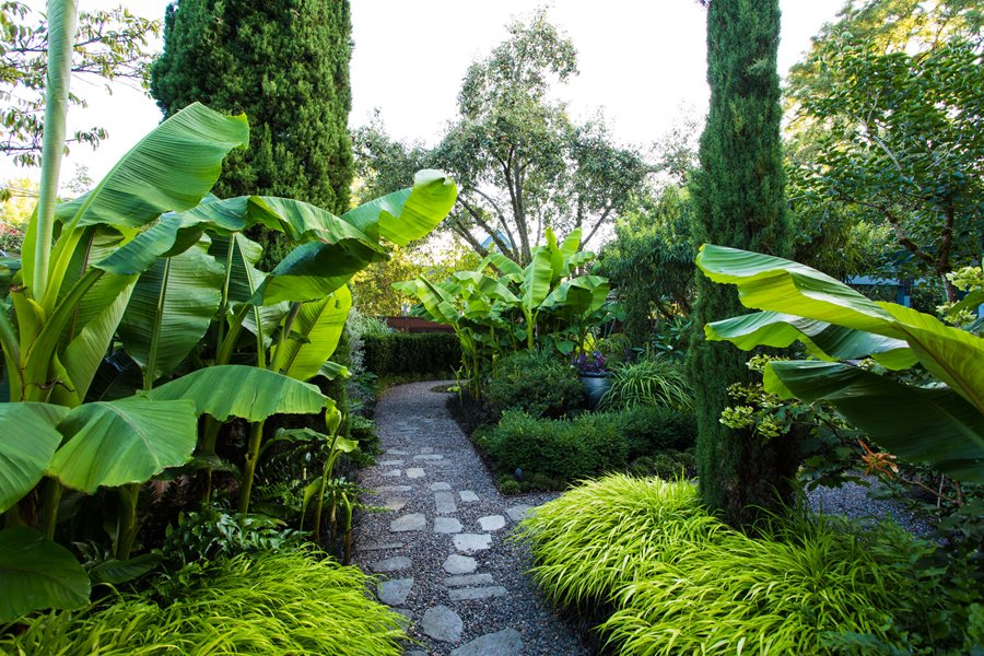 Small Garden Gets Tropical Makeover | Garden Design on Tropical Small Backyard Ideas id=39309