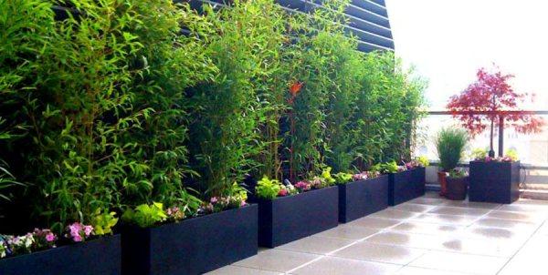 rooftop terrace garden Guide to Rooftop Gardens | Garden Design