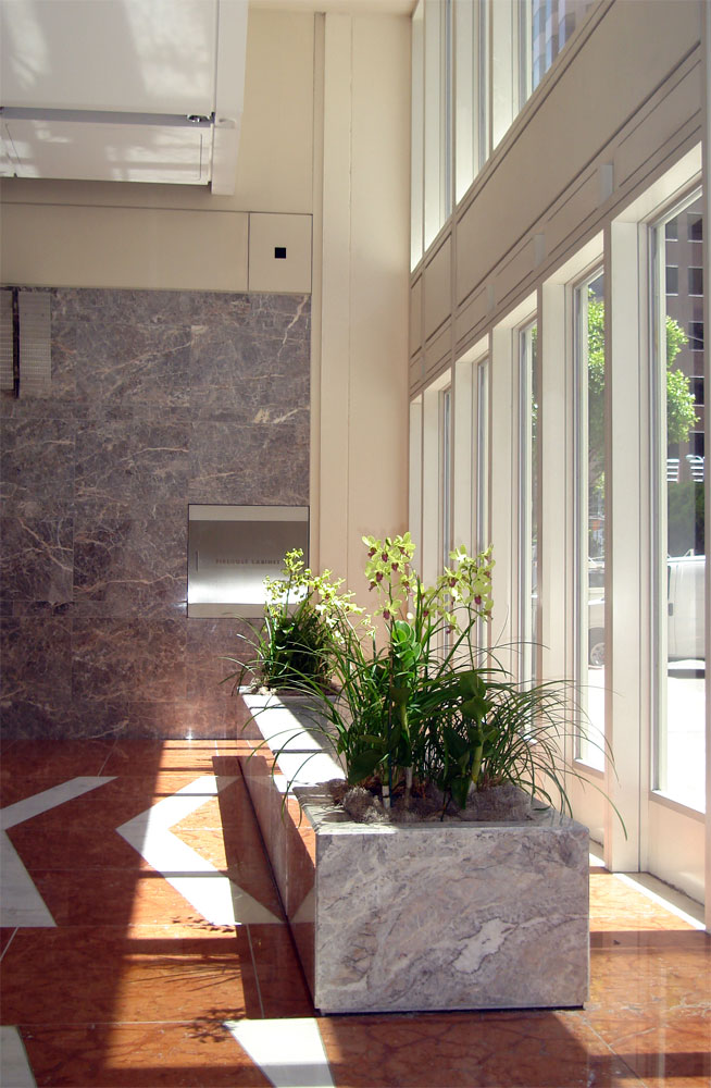 Interior Plant Design Amp Maintenance Gardeners Guild Sf