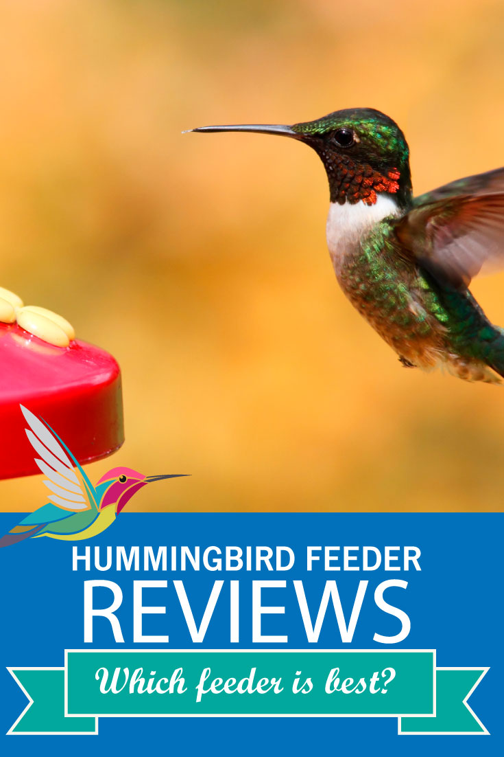Which Hummingbird Feeder is Best? Review of 4 Feeders -- There are many different types of hummingbird feeders. Find out which ones are easy to clean, easy to fill, and are sturdy enough to last several years.