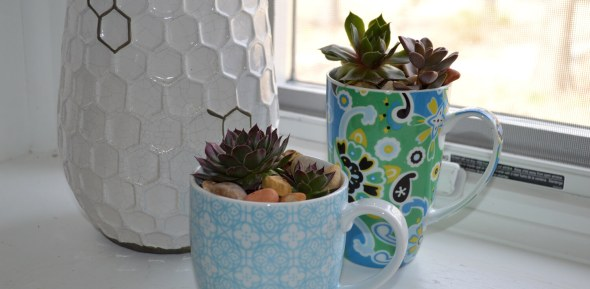 teacup-slider