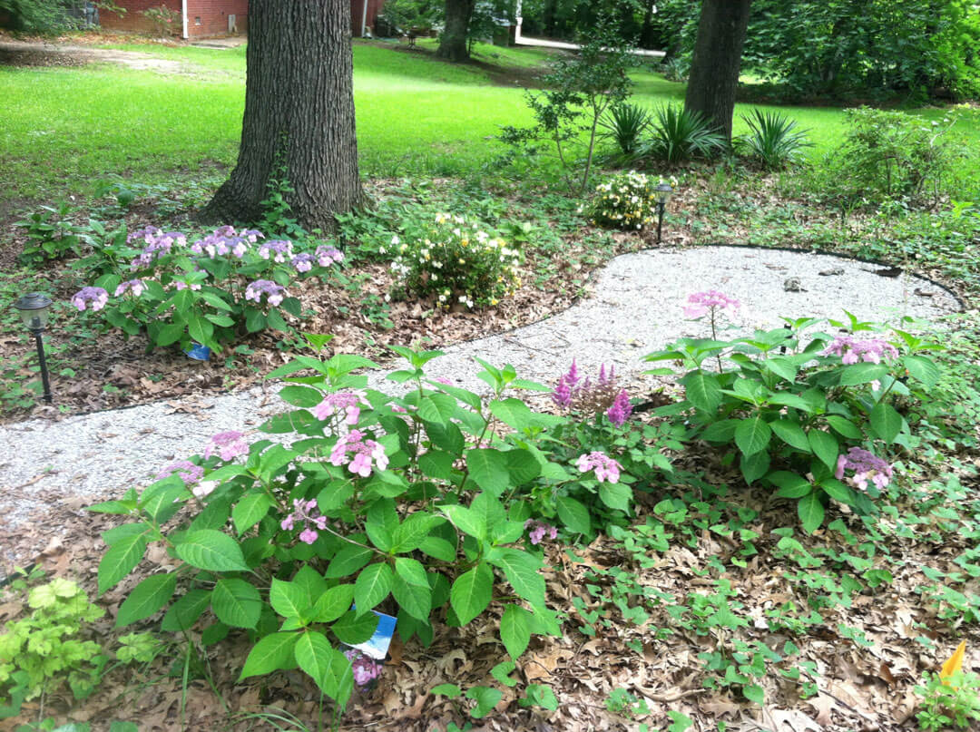 Landscape solutions for the base of trees for Landscaping rocks under trees