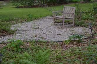 Shade garden sitting area