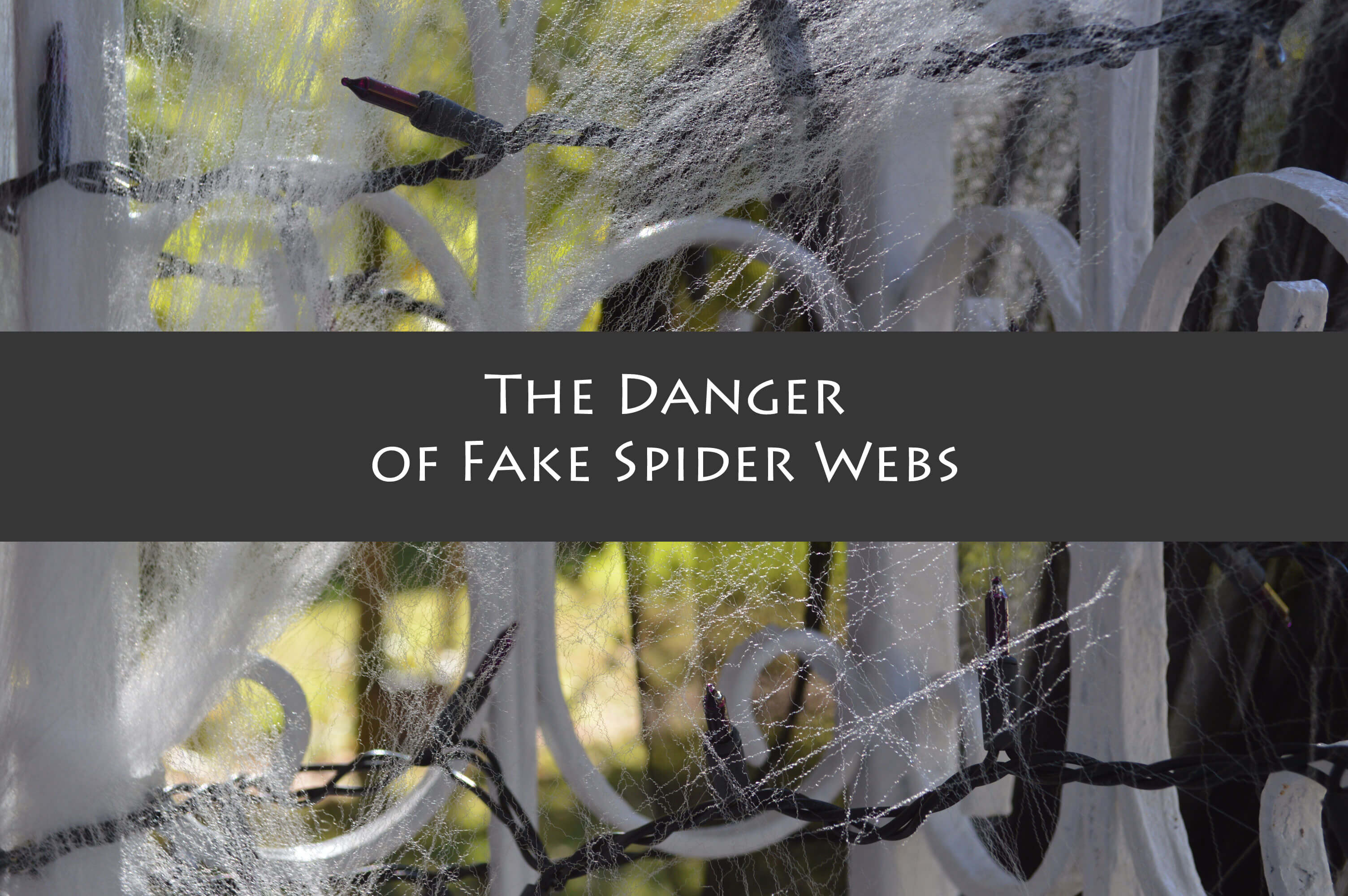 fake spider webs