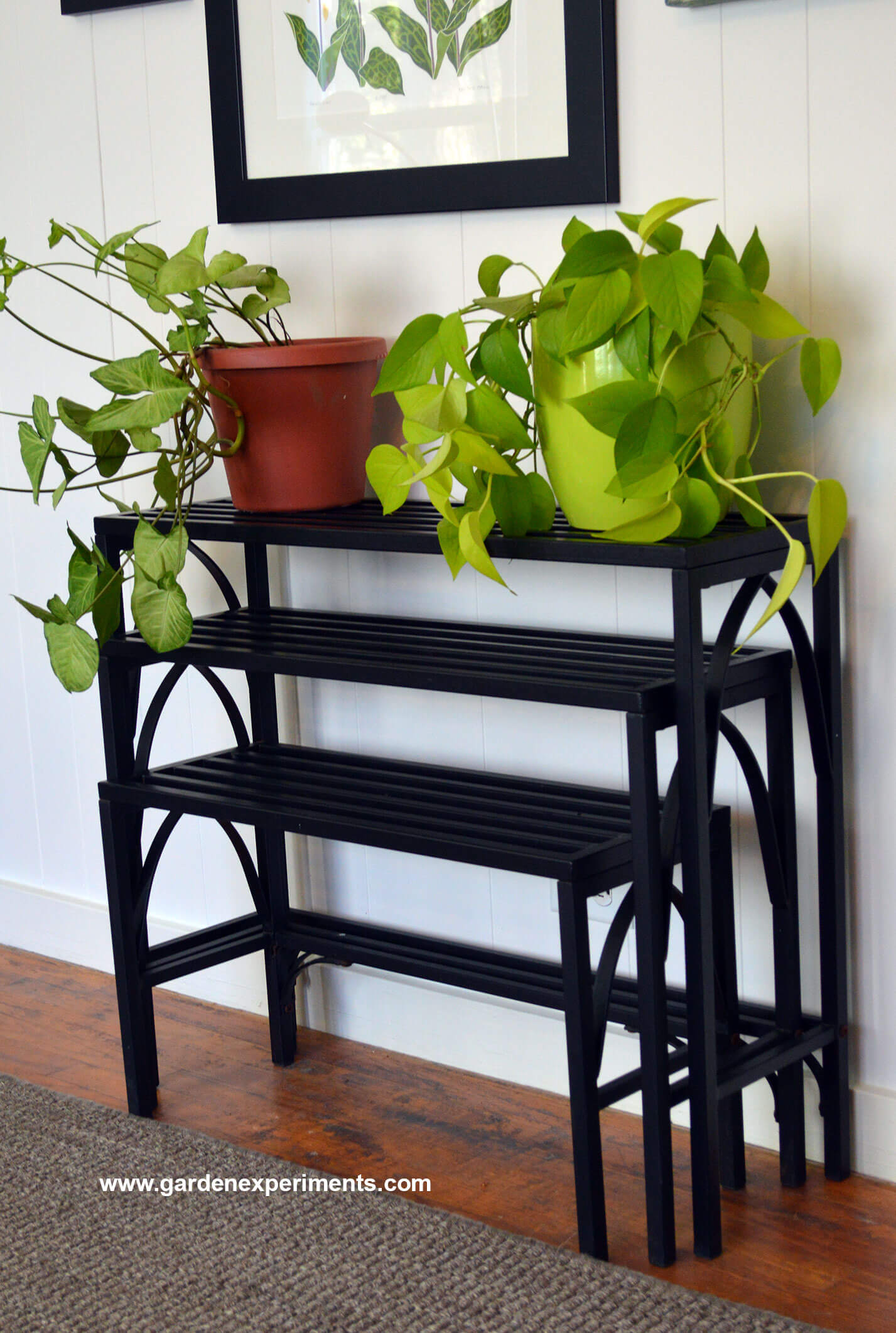 Sturdy Metal Plant Stand Holds 12 Plants