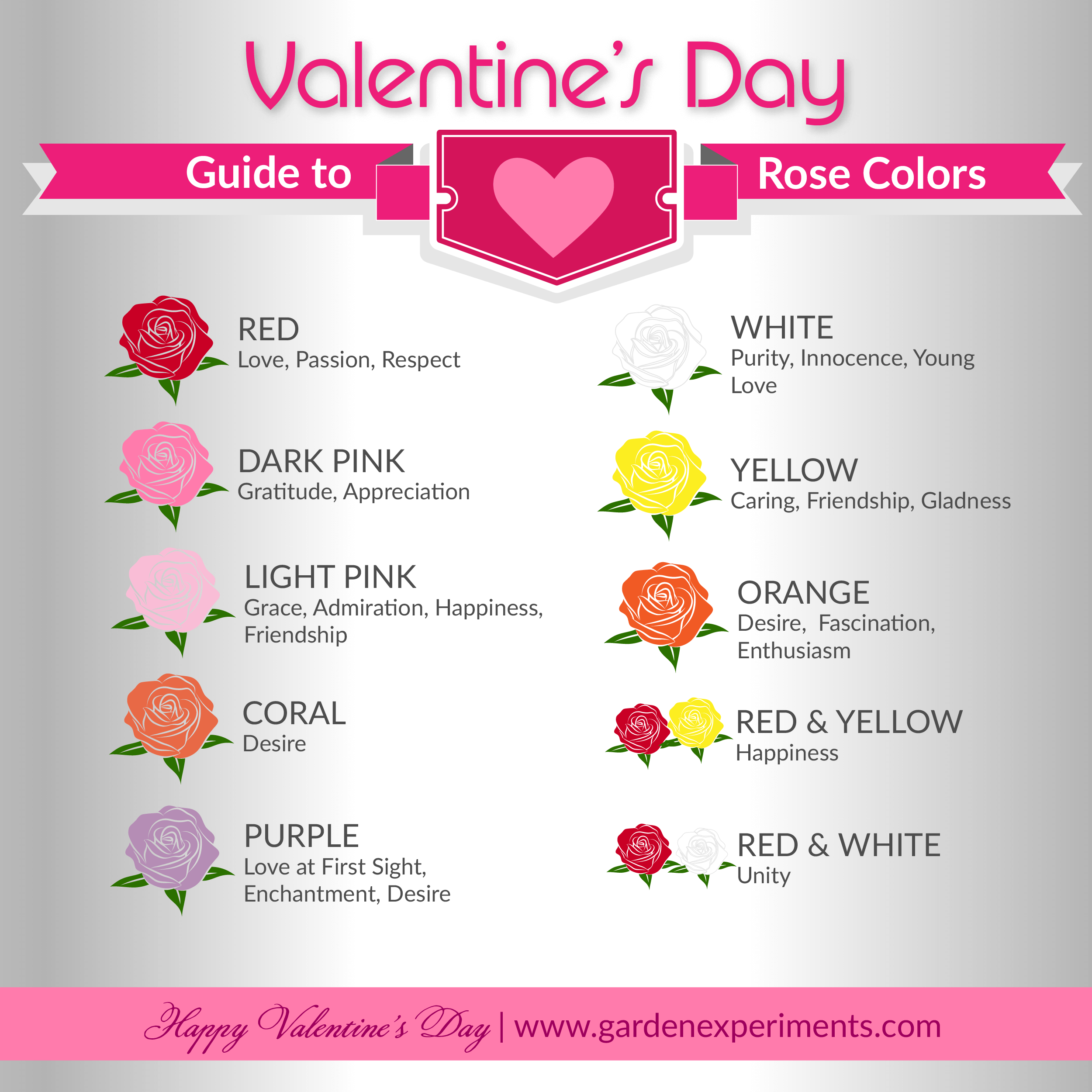 The meaning of rose colors a valentine 39 s day guide for Meaning of flower colors