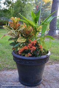 My 2016 Fall Planter