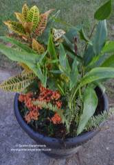 fall-container-top