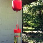 Ant Moat and Hummingbird Feeder