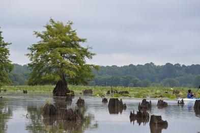 Canoe day on the lake