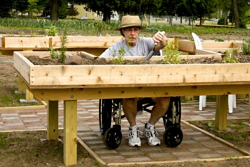 Raised beds for handicapped