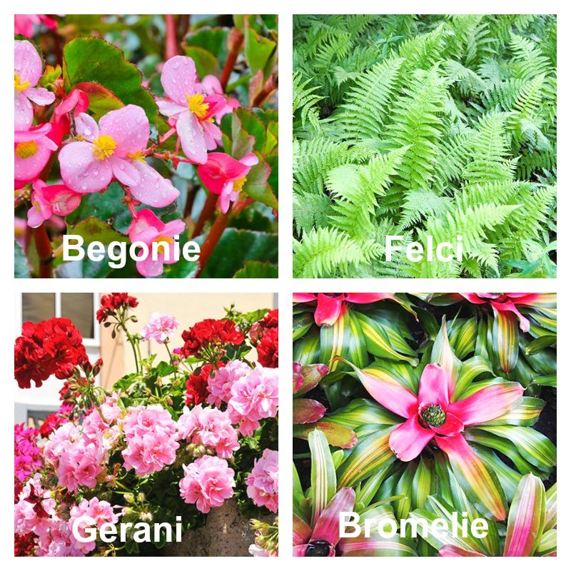 giardini verticali - design ed ispirazione [foto] | gardenhome's blog - Piante Per Giardini Verticali