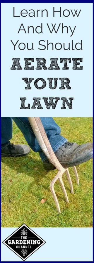 How to aerate your lawn