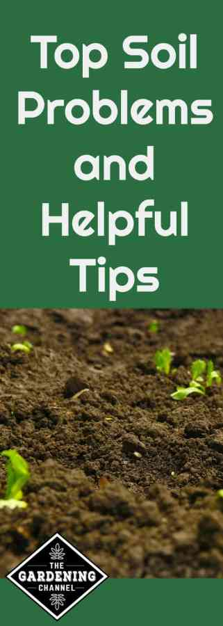 top soil problems