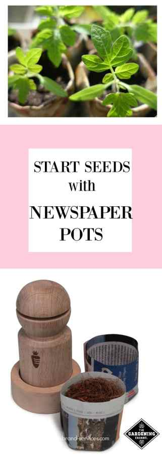 Make your own Newspaper Pots
