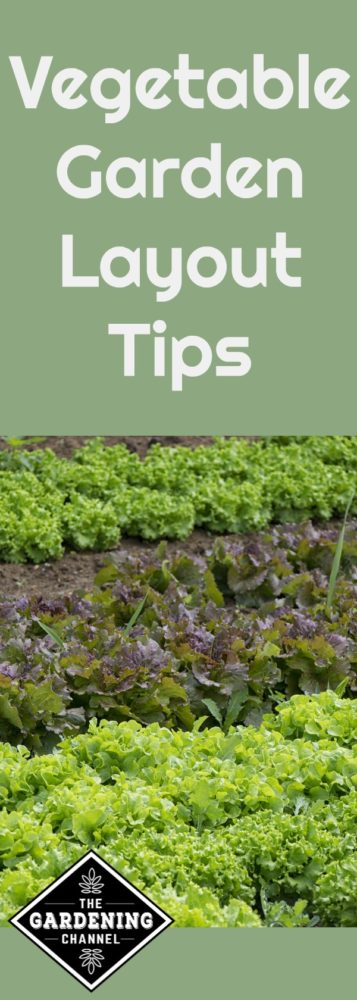 vegetable garden layout tips gardening channel