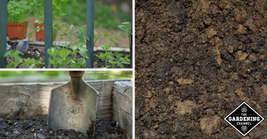 Make Fertile Soil For Raised Beds