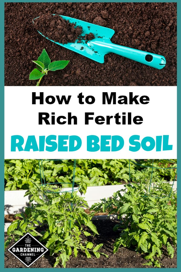 blue shovel on rich soil and tomato plants in raised bed with text overlay how to make rich fertile raised bed soil