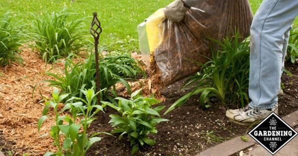using mulch in your garden