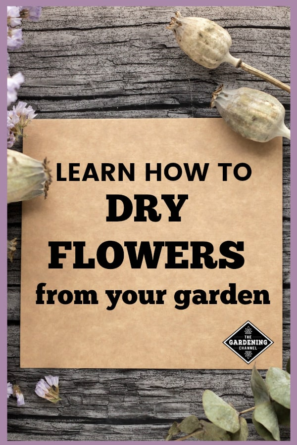 dried flowers on wood background with text overlay learn how to dry flowers from your garden