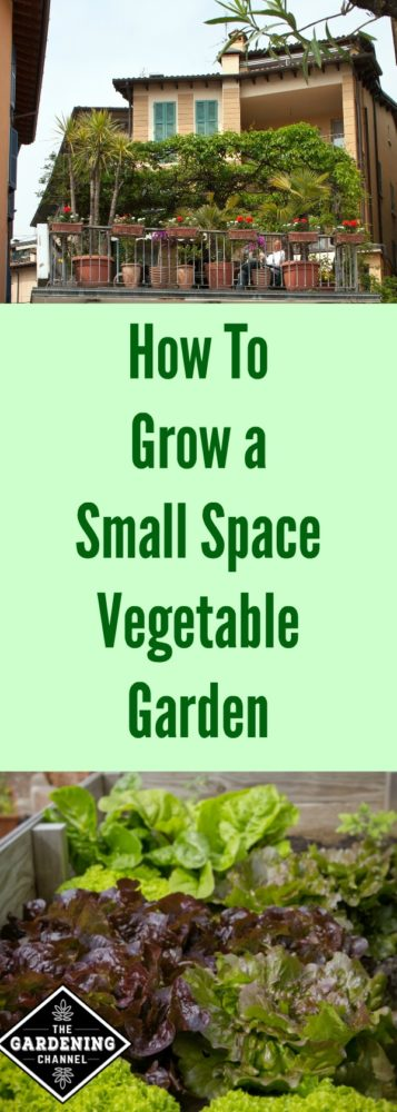 How to Grow a Small-Space Vegetable Garden - Gardening Channel