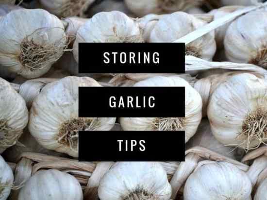 Tips to Storing Garlic