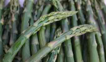 The Health Benefits of Asparagus