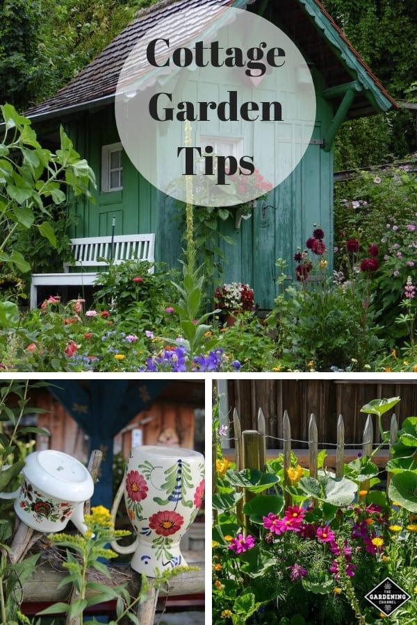cottage garden cottage garden fence and cottage garden border with text overlay cottage garden tips