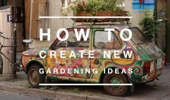 How to Come Up with New Gardening Ideas