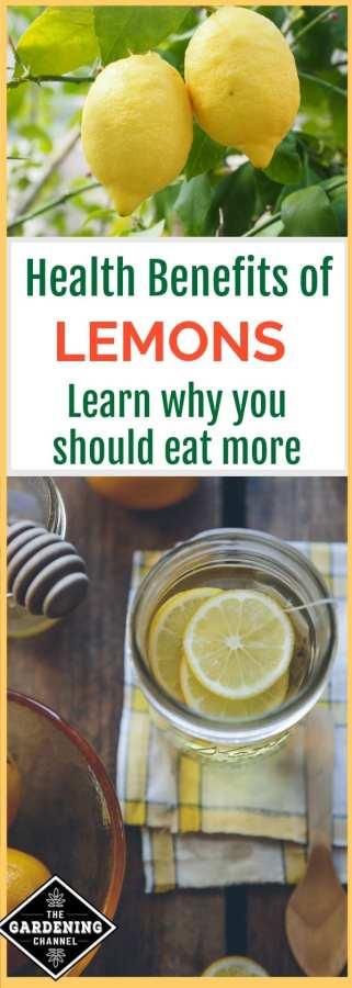 health benefits of lemons