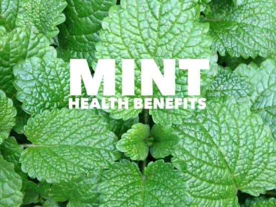 Heath Benefits of Mint