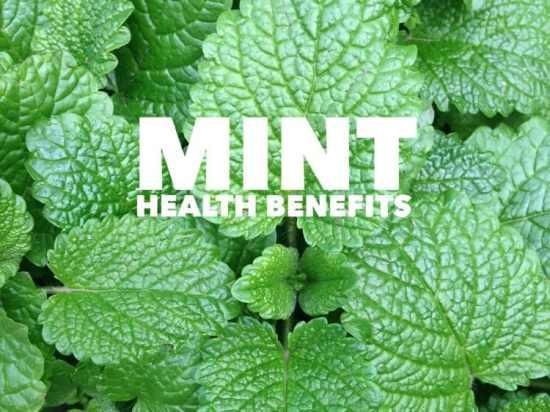 Heath Benefits of Mint