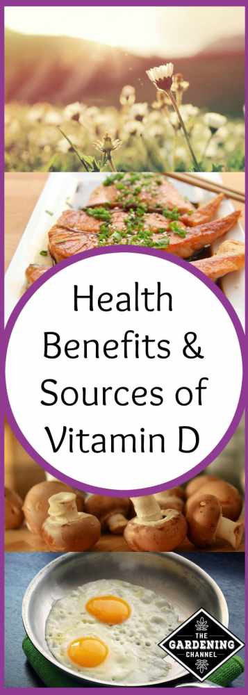 sources and benefits of vitamin d