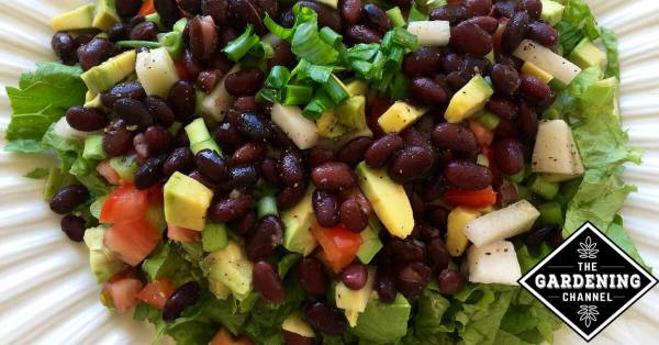 black bean salad for health benefits